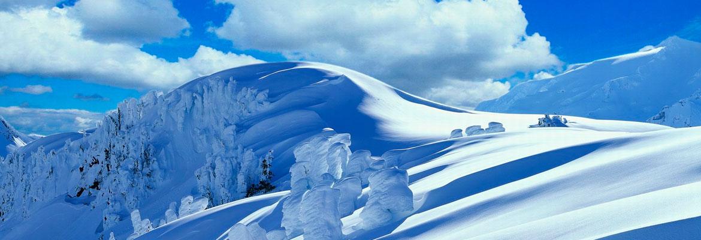 отдых в Карпатах зимой цены
