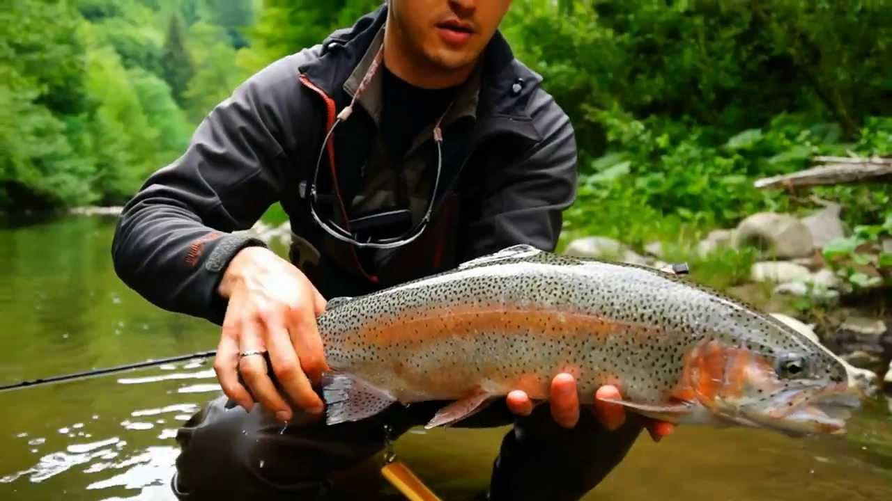 рыбалка на форель в Буковеле